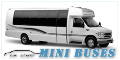 Indianapolis Mini Bus rental