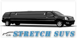 Wedding limousine in Indianapolis, IN